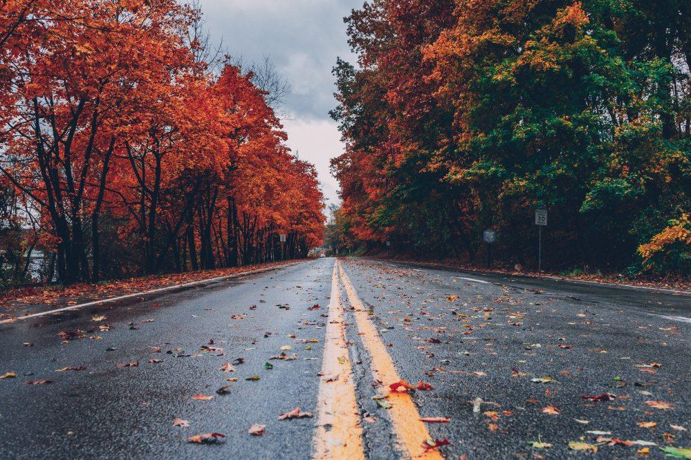 colorful-wallpaper-colors-of-autumn-computer-wallpaper-1563356